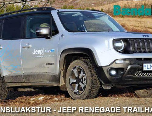 Jeep Renegade Trailhawk 4xe í Bændablaðinu